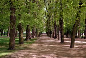 slottsparken